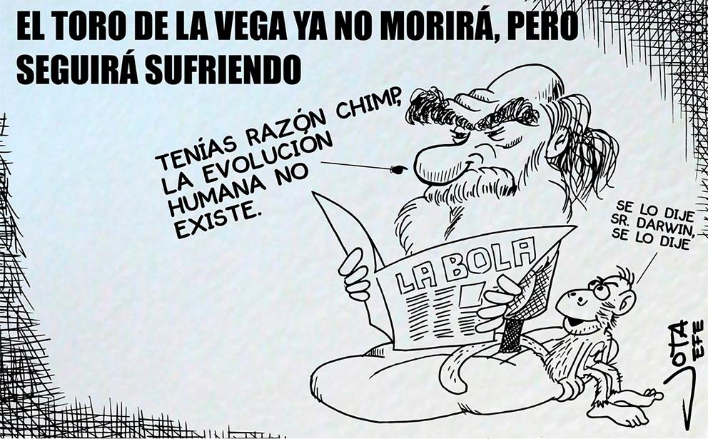 toro-de-la-vega-darwin